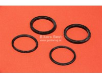 Brake piston seal kit Valkyrie front and rear ( P 17020165 )