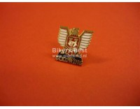 Goldwing eagle pin small