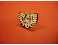 Goldwing GL 1200 logo pin