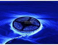 Led strip in waterproof super quality per meter color Blue ( 20401331 )